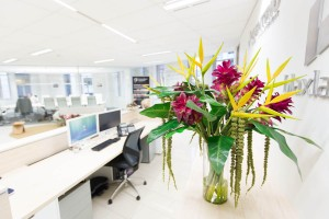 Use Floral Designs in the Office to Increase Productivity